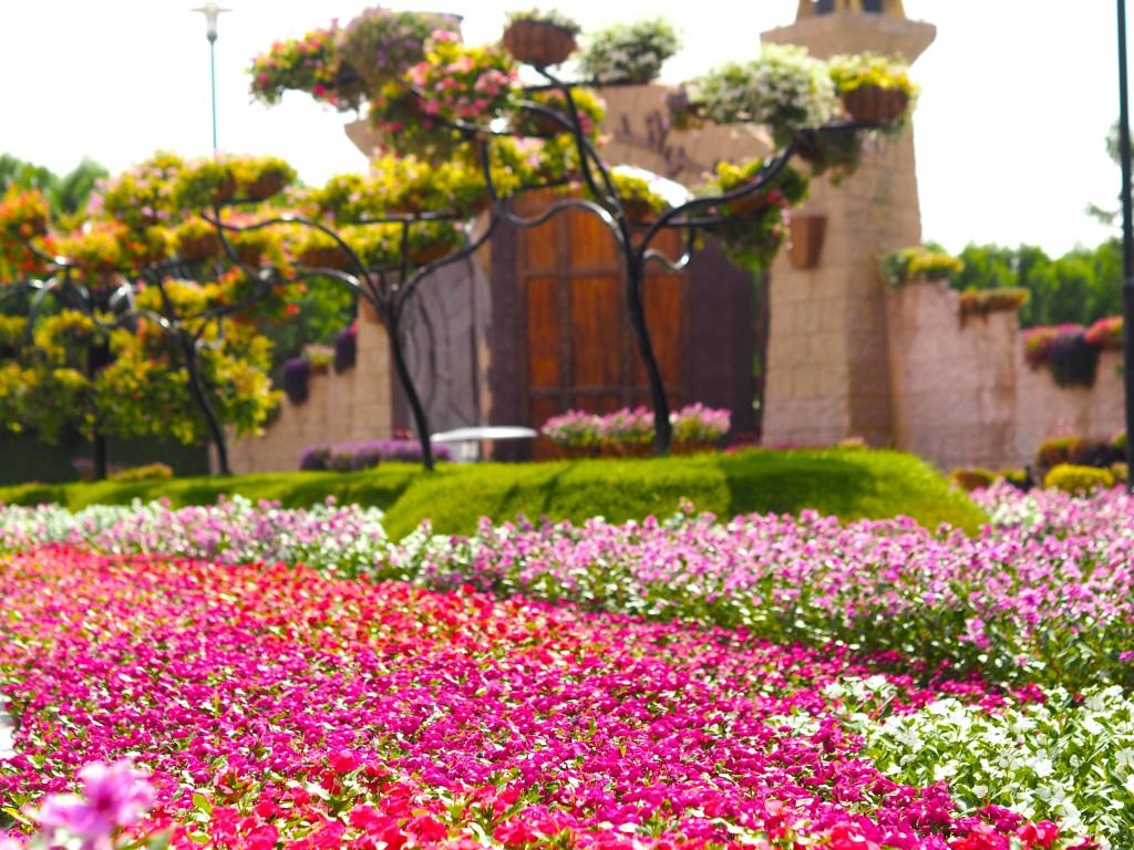 MIRACLE GARDEN DUBAI FASHIONBLOGGER OOTD CITY TOUR MY DUBAI