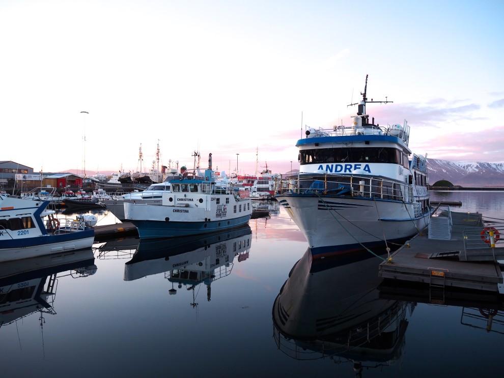 Reis naar Ijsland, slapen in Marina Icelandair hotel, dit is de haven van Reykjavik