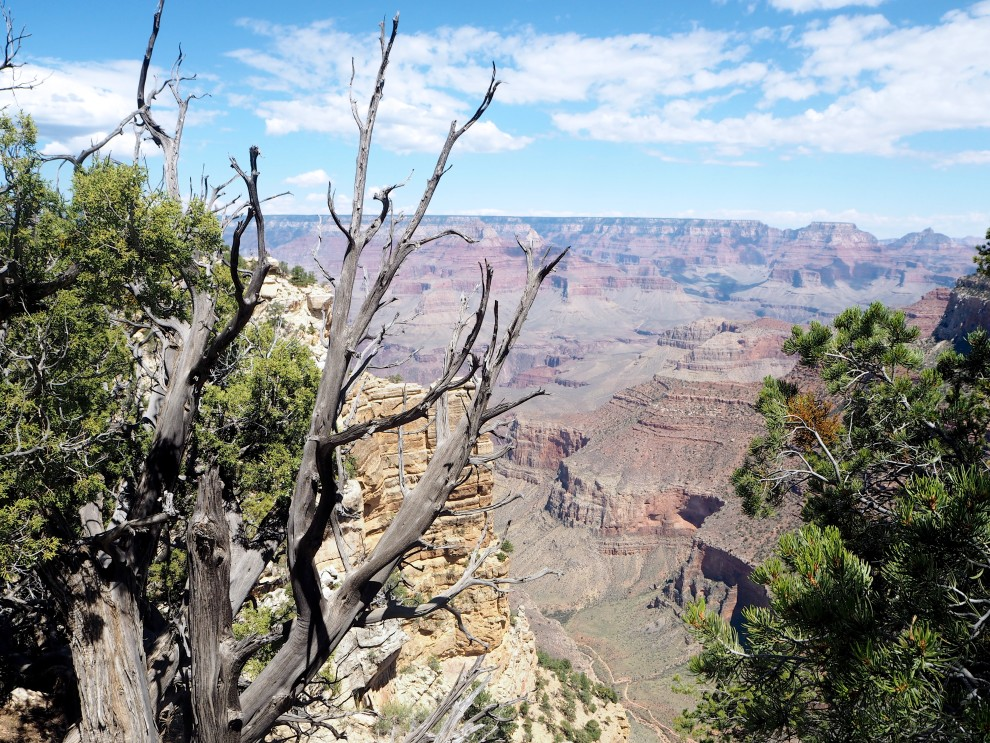 GRAND CANYON ARIZONA TRAVEL HOTSPOTS  USA ROADTRIP