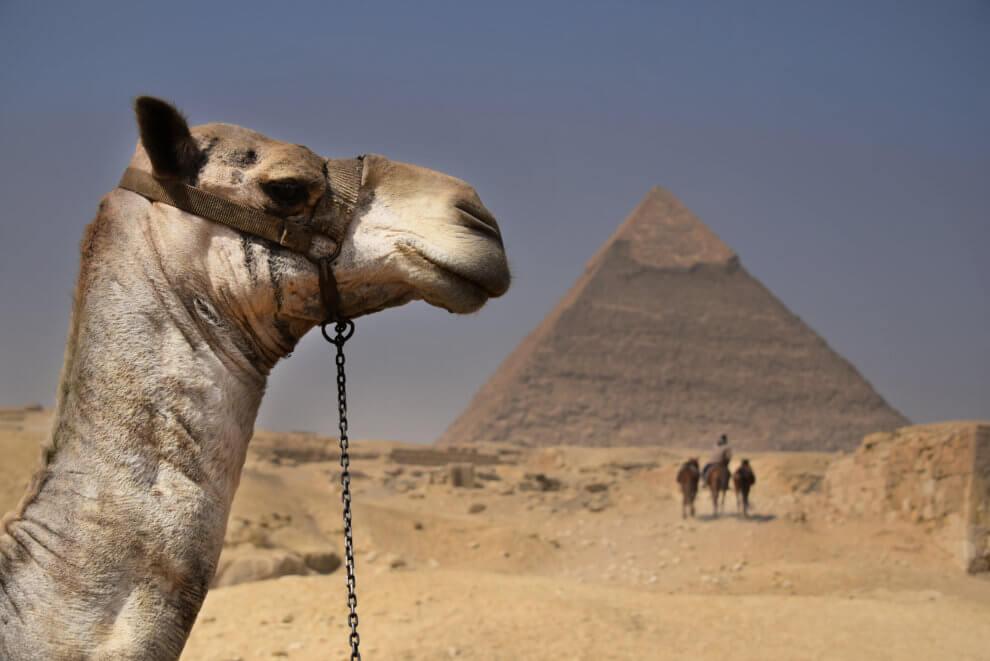 DRIE highlights van Caïro EGYPTE - PIRAMIDES VAN EGYPTE