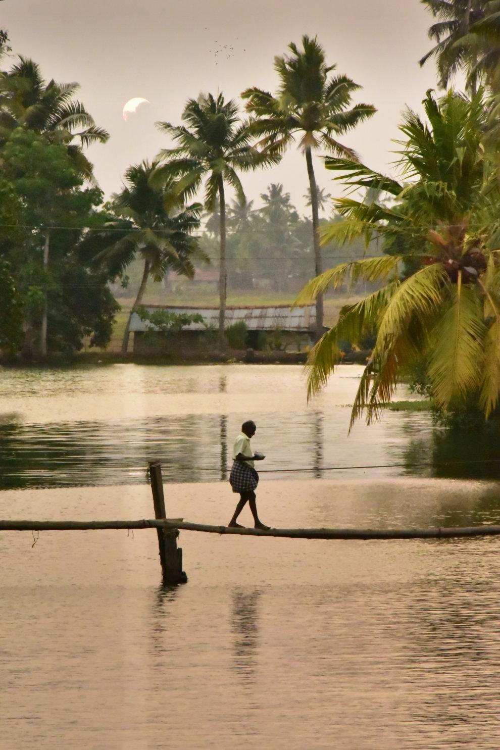 Kerala backwaters houseboat AllepeyKerala backwaters houseboat Allepey