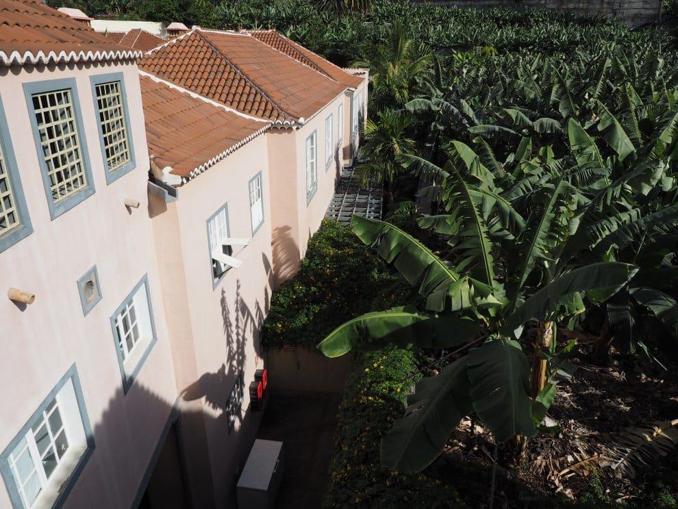 Hacienda De Abajo La Palma