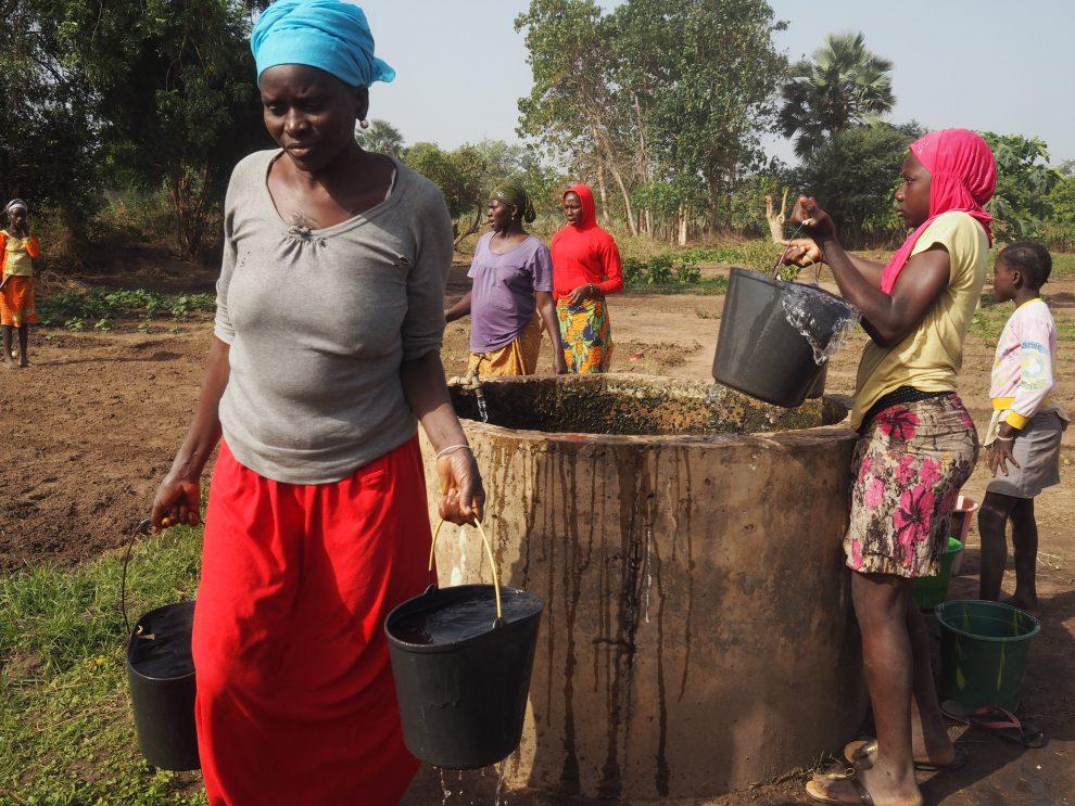 Het dagelijkse leven vanvrouwen in de Community Garden Gambia Abca's Creek Lodge