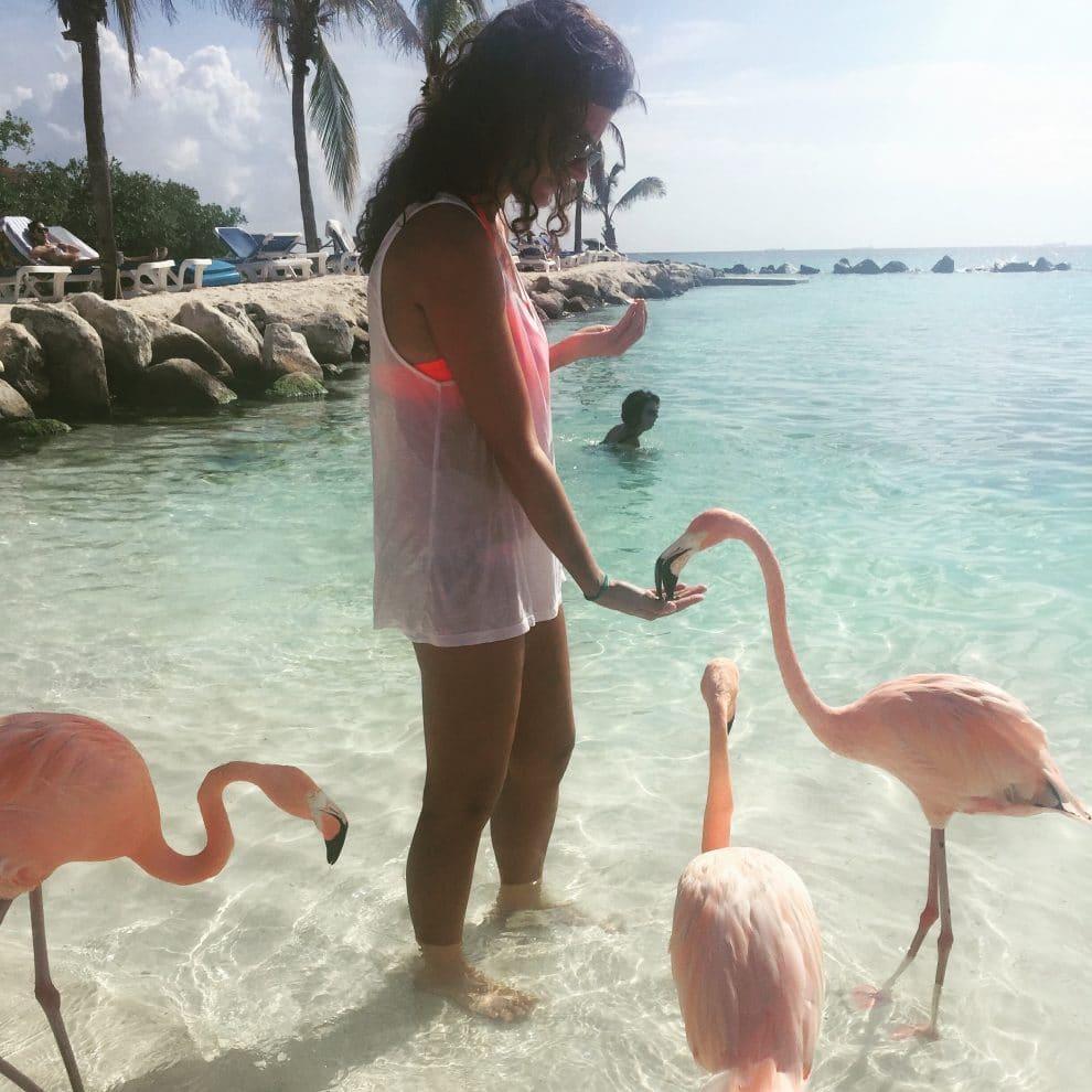 Flamingo Aruba Vera Vos