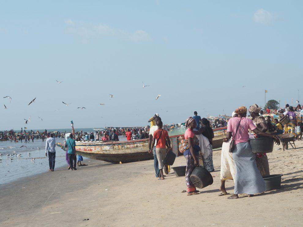 Dingen doen in Gambia, ga op pad met een lokale gids. Vakantie in Gambia. Tanji vismarkt Gambia bezoeken