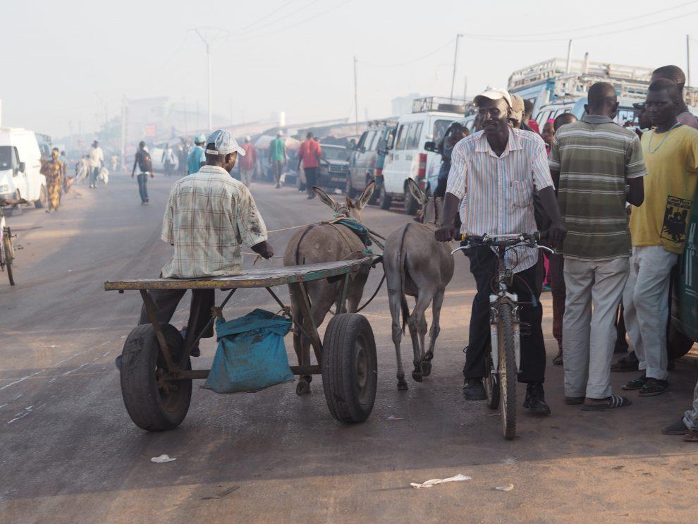 Dingen doen in Gambia, ga op pad met een lokale gids. Vakantie in Gambia