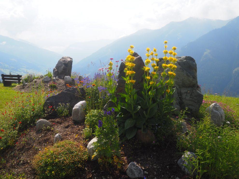 5 dagen Saalbach - Hinterglemm in de zomer Reiteralm Saalbach