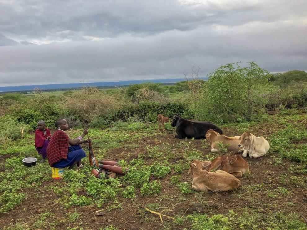 Masai stam in Tanzania bezoeken. Esilalei gemeenschap via Isoitok Camp.