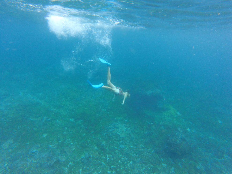 Eerste keer op vakantie naar Bali. 21-daagse reisroute & 10 tips - Dingen doen op Bali - snorkelen met reuzenmanta's