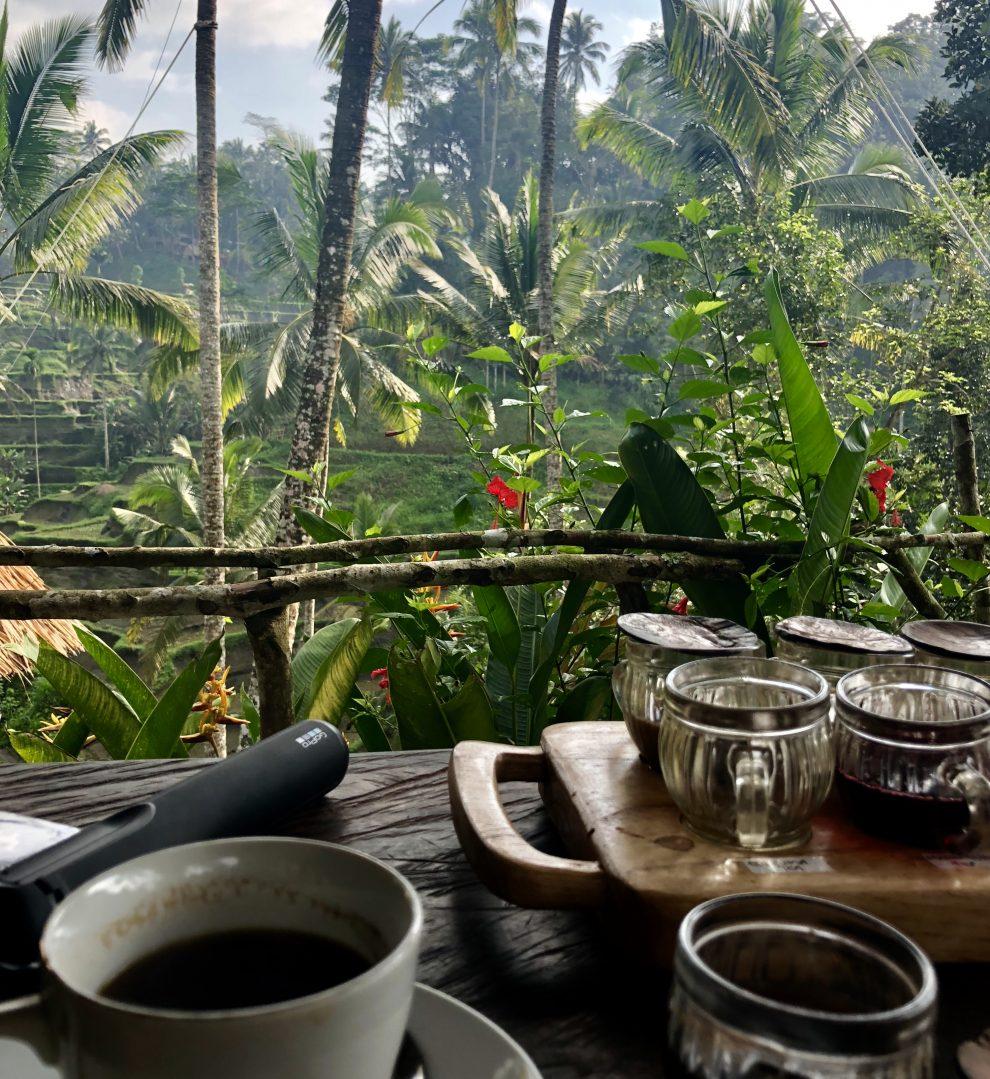 Eerste keer op vakantie naar Bali. 21-daagse reisroute & 10 tips - Drink échte Luwak koffie - thee en koffie proeverij in Bali
