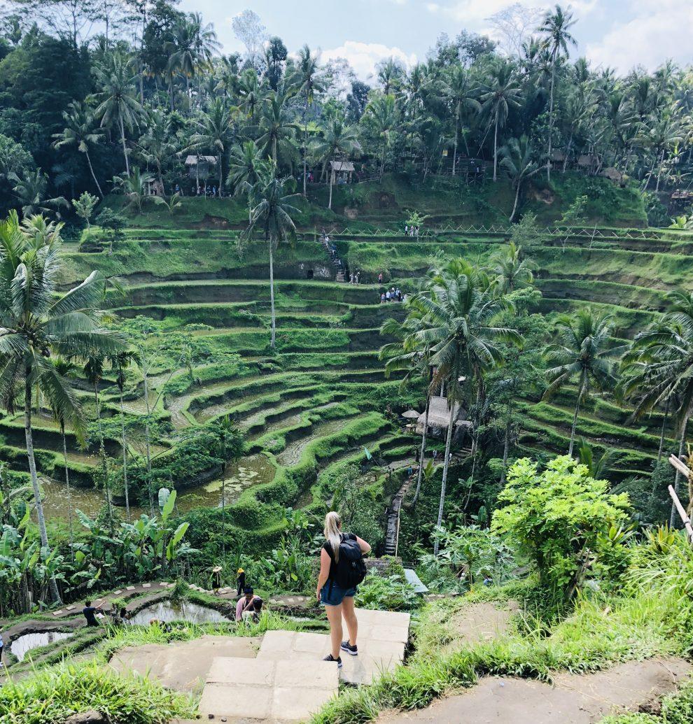Eerste keer op vakantie naar Bali. 21-daagse reisroute & 10 tips - Pak de scooter naar de Tegallalang rijstvelden