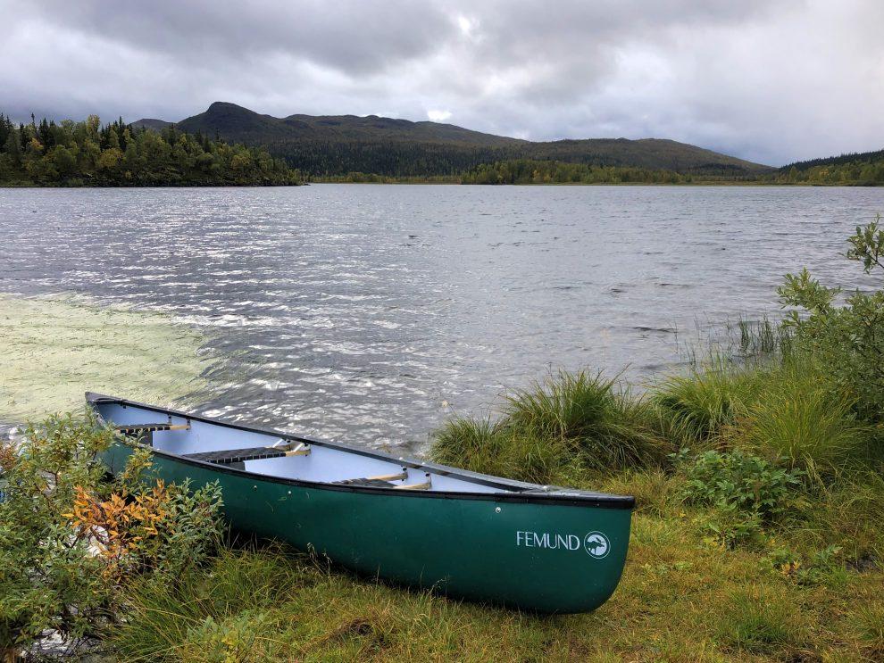 Vakantie in de wildernis van Zweden -