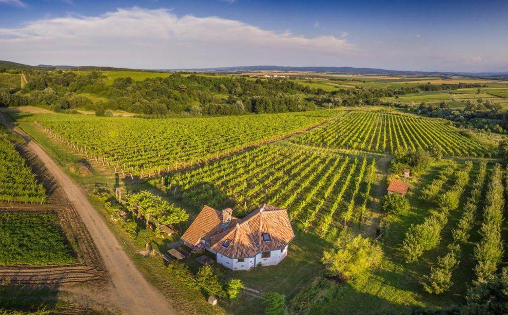 Slavonië Kroatië, op vakantie in Kroatie, balkan reizen, Park prirode Papuk, Kutjevo