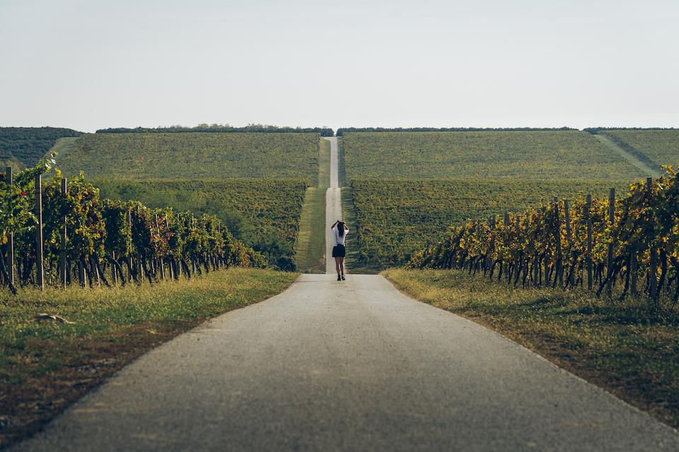Slavonië Kroatië, op vakantie in Kroatie, balkan reizen