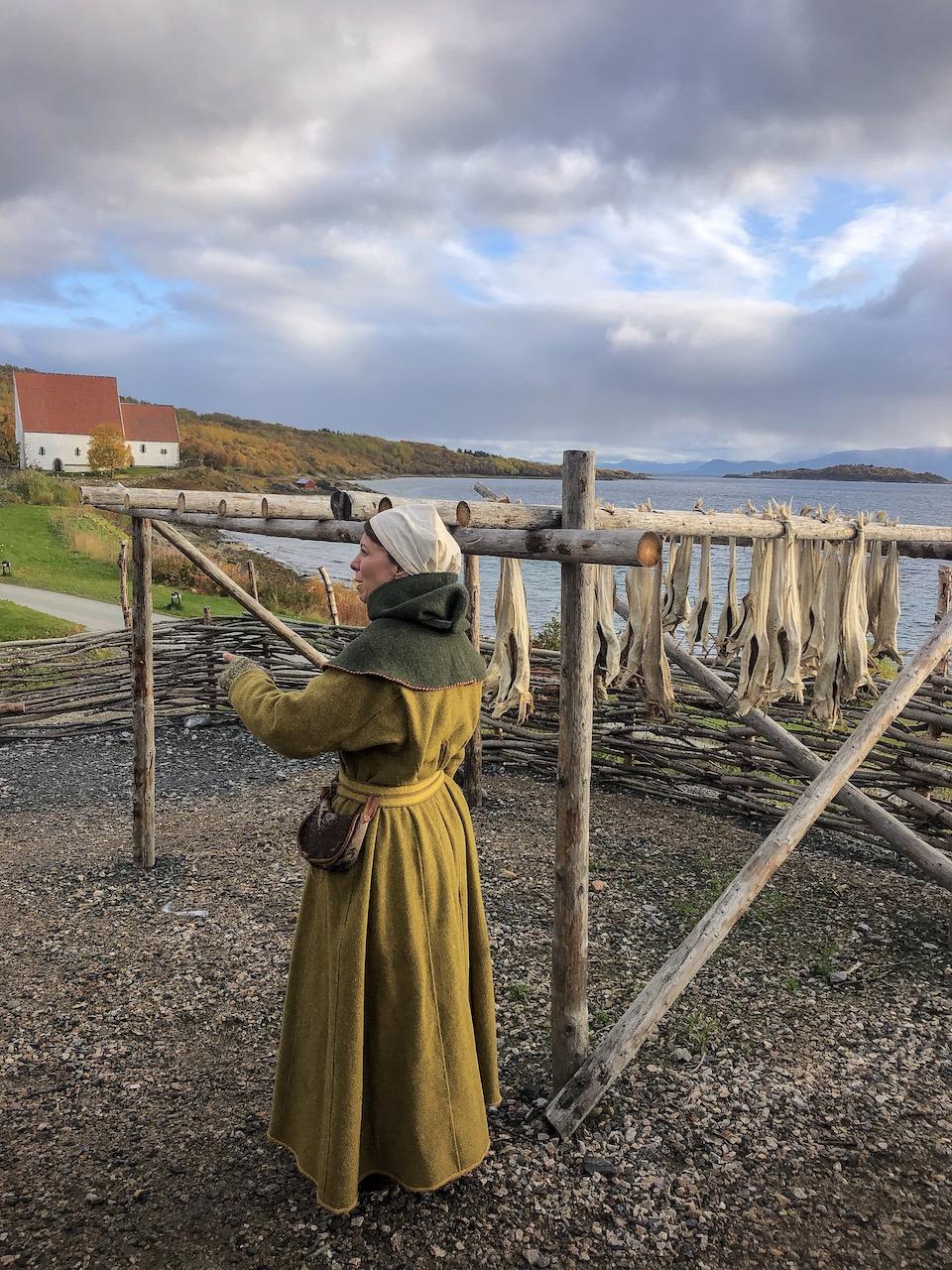 Trondenes Historical Centre and Medieval Farm - Harstad Noorwegen: Viking geschiedenis & RIB boat-tour langs de fjorden.