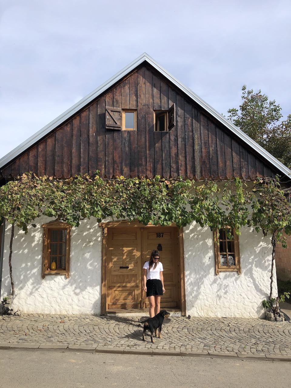 Slavonië Kroatië, op vakantie in Kroatie, balkan reizen, Josic Restaurant and Winery