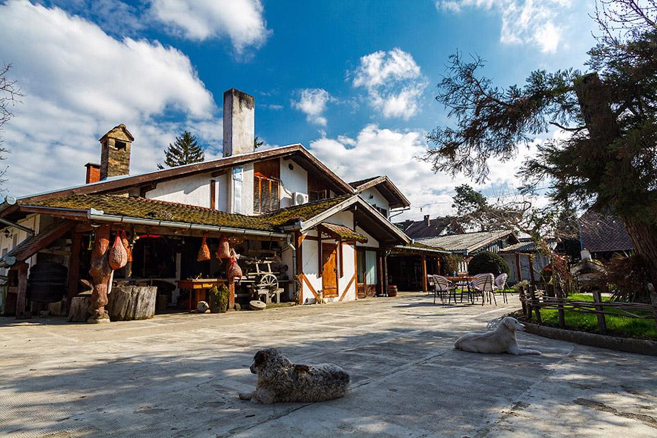 Slavonië Kroatië, op vakantie in Kroatie, balkan reizen, Zlatni Klas Otrovanec