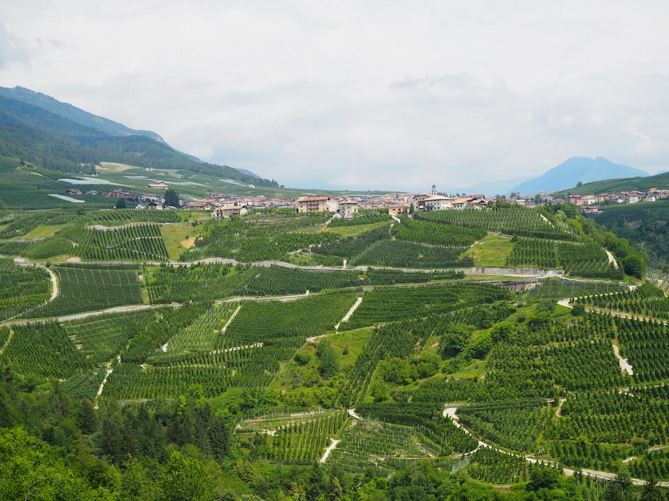 Roadtrip Noord - Italie regio Trentino