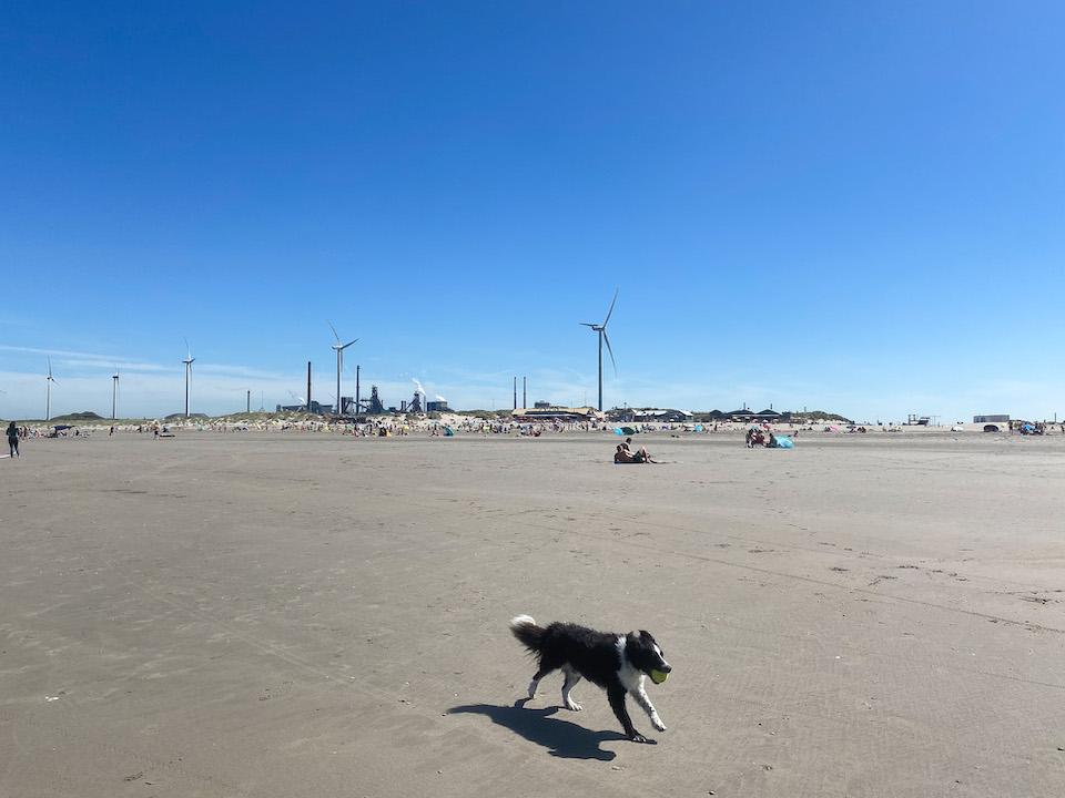 Tata Steel Velzen Noord dagje strand Wijk Aan Zee