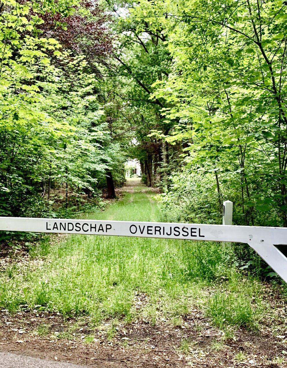 Dagje uit in Overijssel & Drenthe -  Breeze
