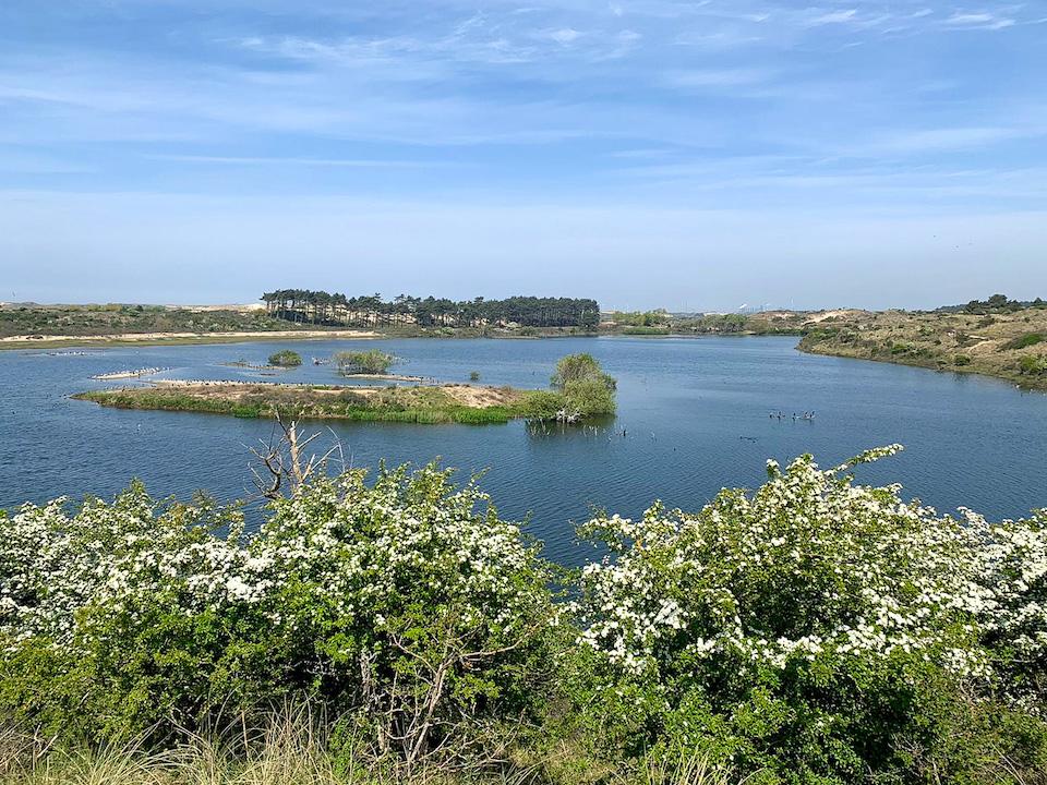 Vogelmeer Nationaal Park Zuid-Kennemerland