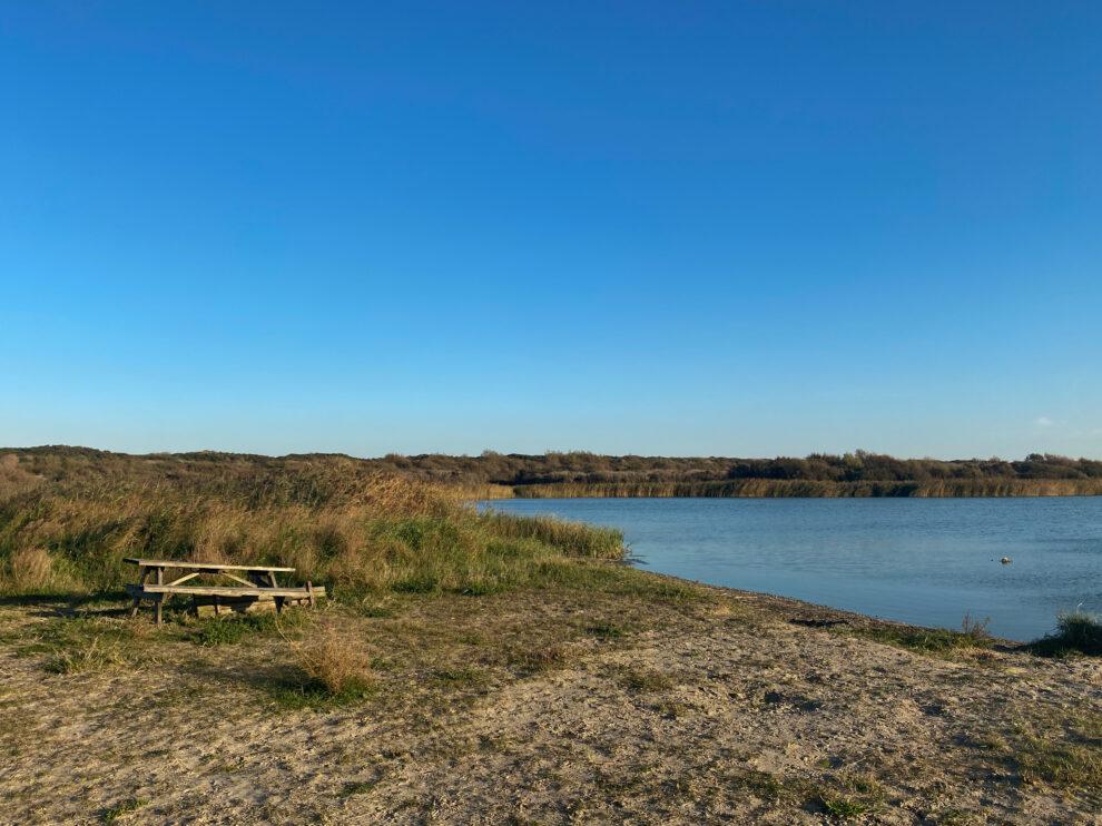 Natuurgebied Kennemerstrand - Kennermermeer
