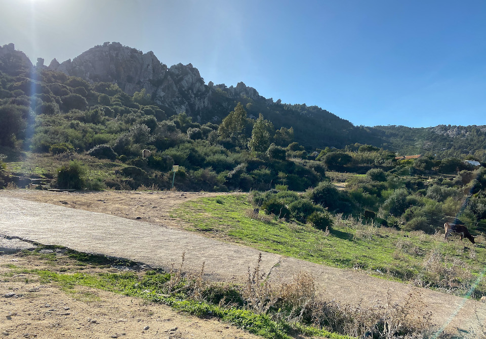 San Bartolo area