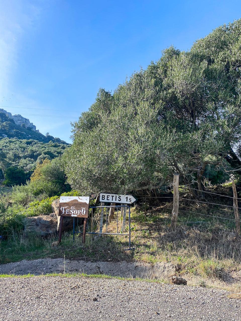 Betis Tarifa - klimgebied Andalusie