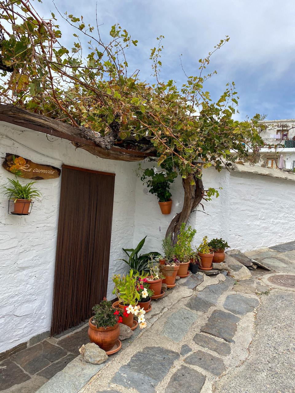 Capileira mooiste dorp van Spanje