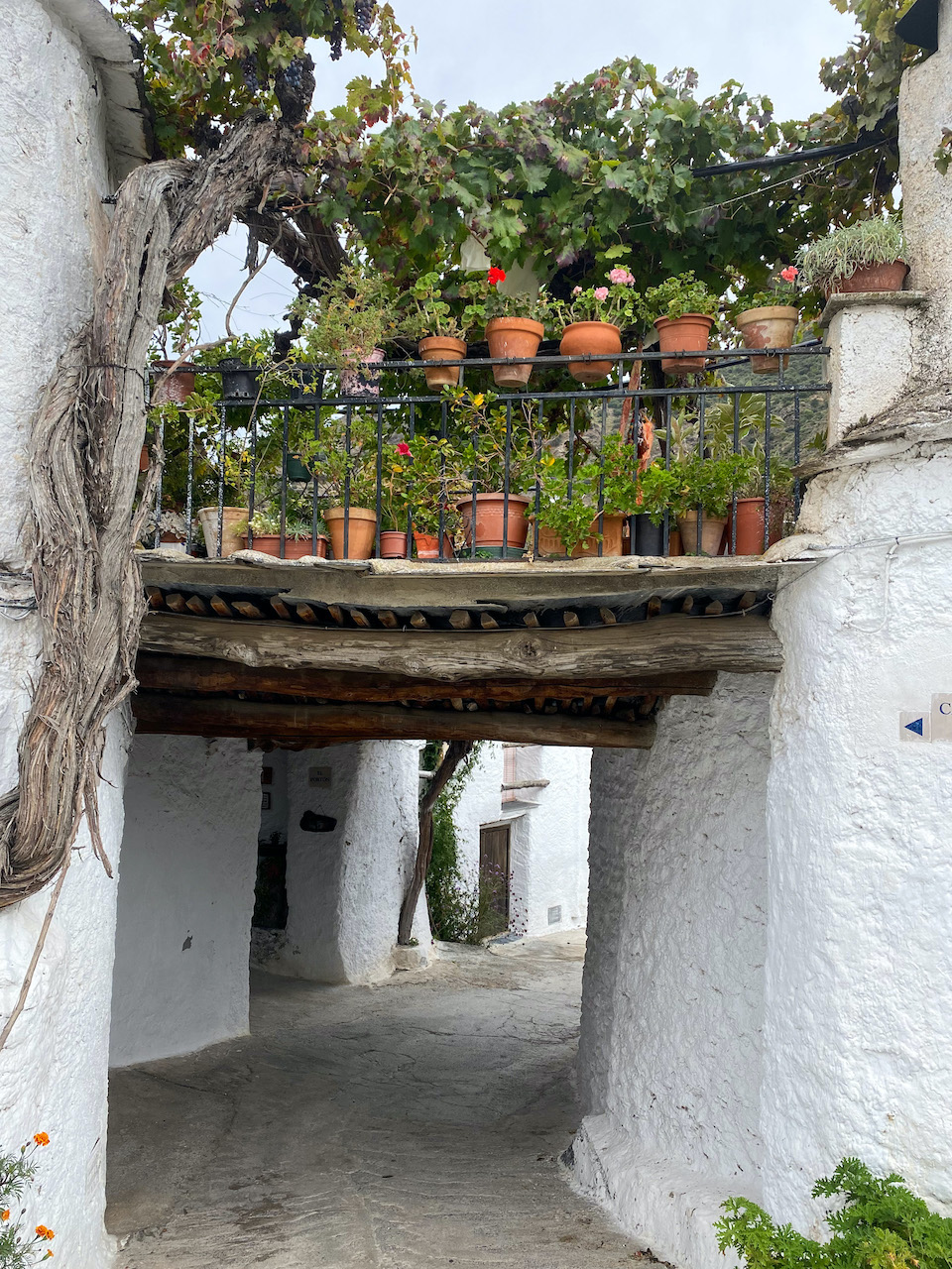 Mooiste dorp Alpujarras Mecina Fondales