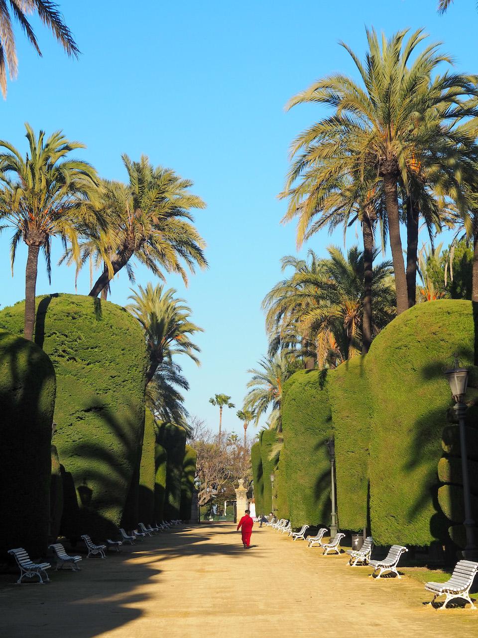 Parque Genovés citytrip Cadiz