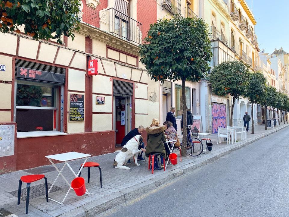 veganistisch eten in Sevilla Doctor Bar Macarena