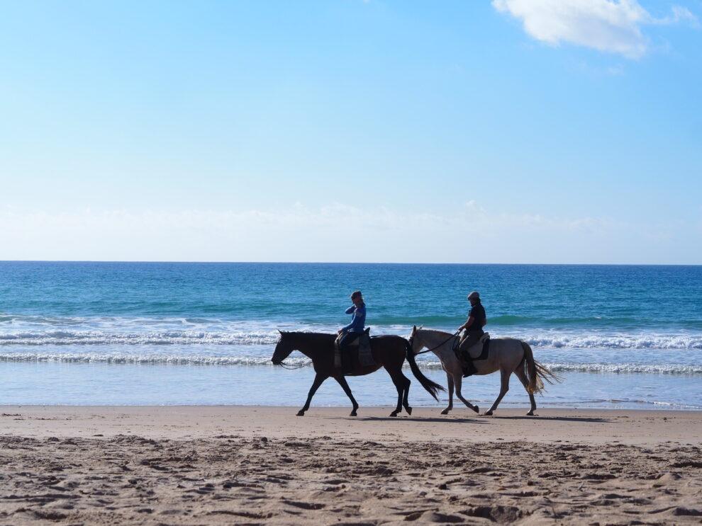 El Palmar Paardrijden op het strand