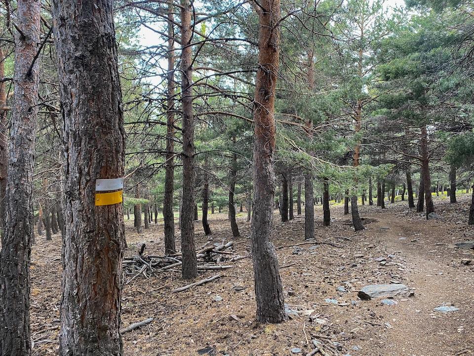 Acequia alta wandelroute Sierra Nevada