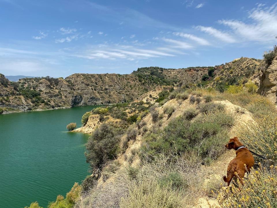 Wandeling langs het meer van Beznar