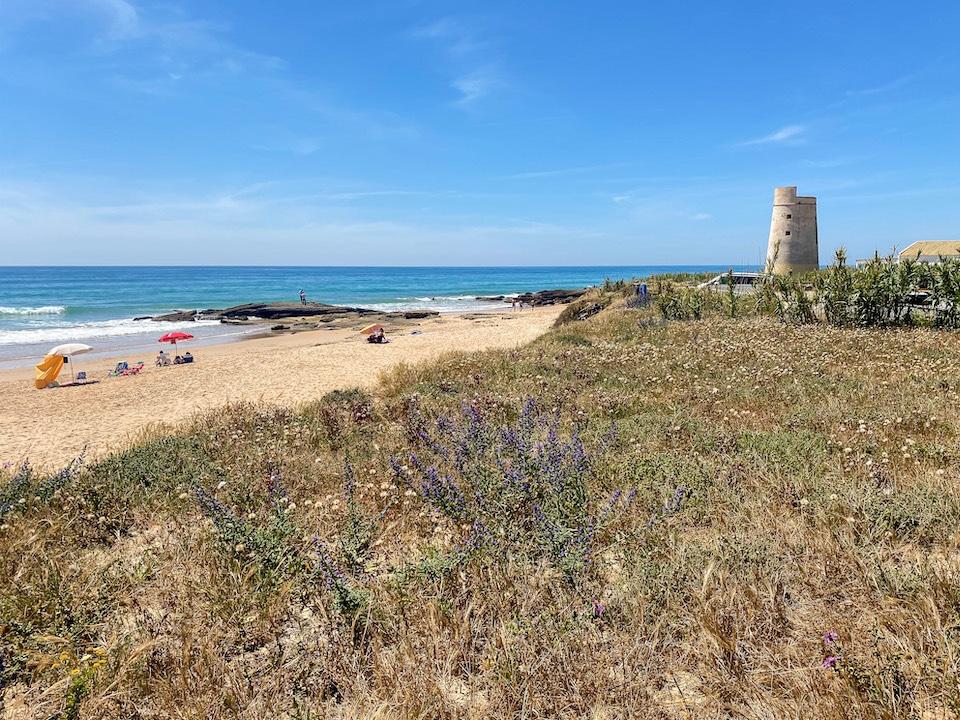 Costa de la Luz - Andalusie - El Palmar surfen