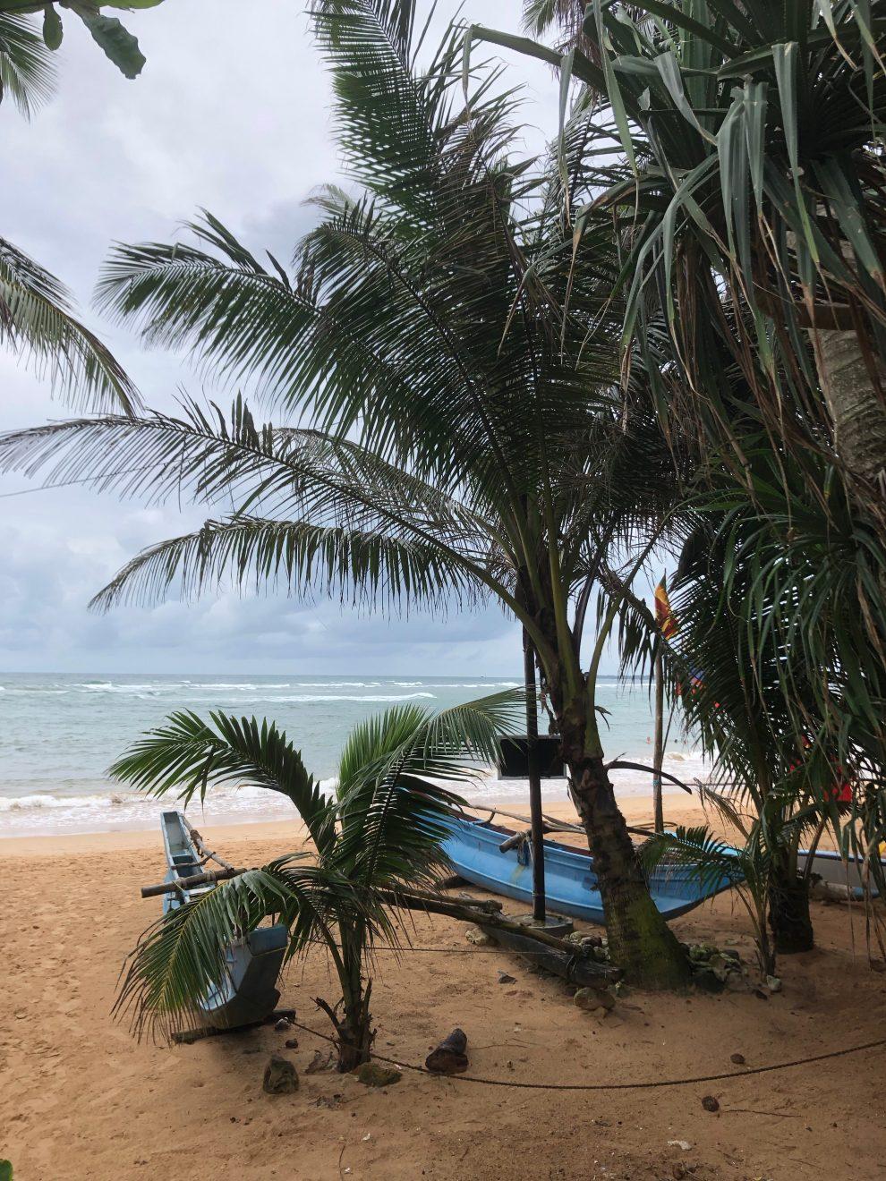surfen in Arugam Bay rondreis Sri Lanka